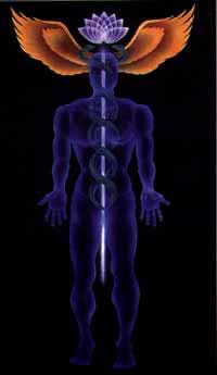 Transpersonal Psychology, Esoteric Anatomy, Esoteric Healing,