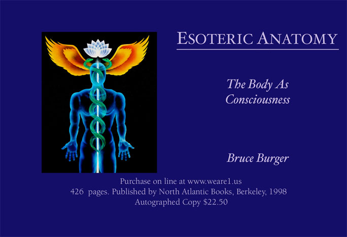 Buy Esoteric Anatomy
